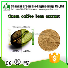 Pure Chlorogenic Acid Green Coffee Bean Extract Diet