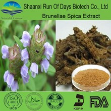 herbal medicine organic product of prunella vulgaris extract