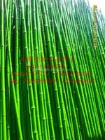 Artificial plants artificial plastic bamboo outdoor artificial bambooplastic bamboo poles yellow bamboo poles
