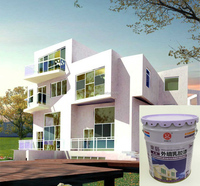 All-Weather High Quality Water-Based Acrylic Latex Exterior Wall Paint