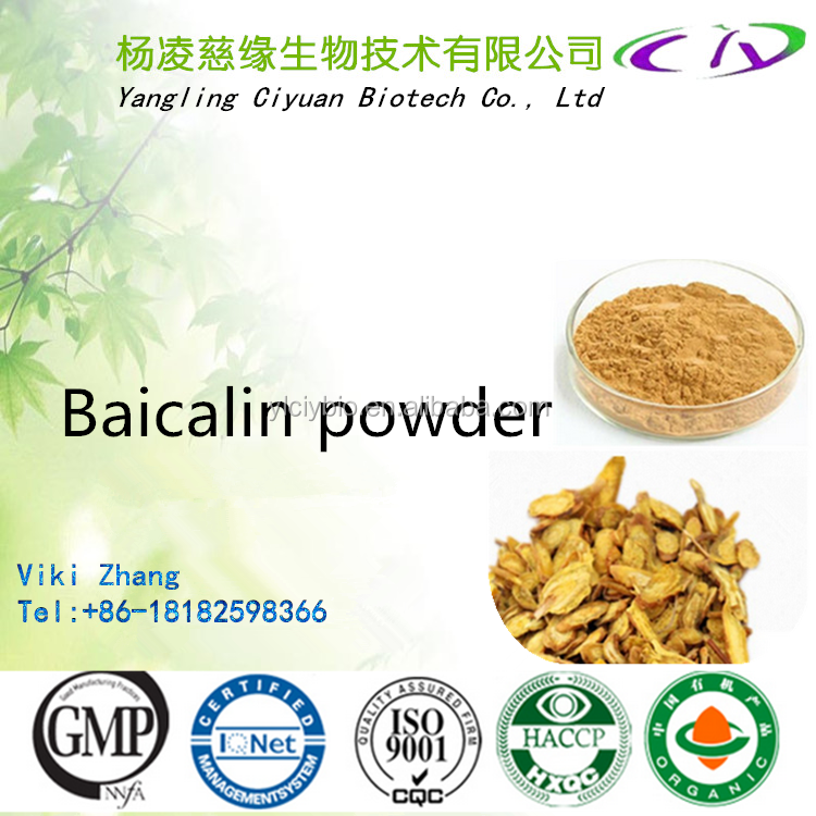 Best quality Scutellaria Root Extract Baicalin 85% CAS NO.: 94279-99-9 for Functional hairdressing cosmetic raw materials