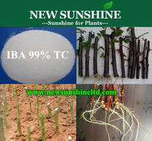 Rooting hormones iba 98% TC / agricultural chemical product Indole butyric acid IBA