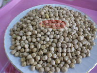 Origin Turkey Chickpeas 8mm best quality