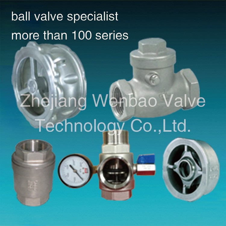 non return valve,piston check valve,non slam check valve