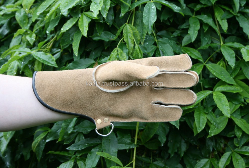 falcon leather gloves