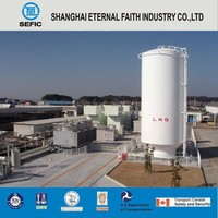 2016 Newest LNG Gas Storage Tank Container