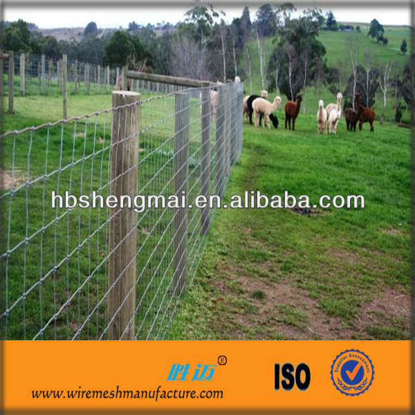 Factory Price Livestock Fence/Cattle Panels/Goat Panels For Sale