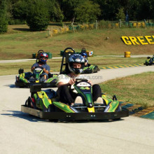 professional supplier f1 racing go karts for sale