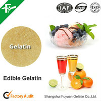 High Quality Food Beverage Gelatin Powder