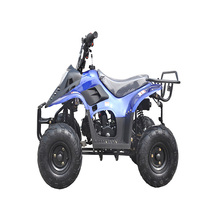 Low price gas powered 110cc ATV 4x4