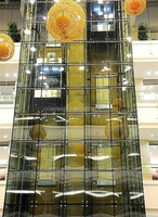 Oria Luxury glass sightseeing elevator,with machine room (ORIA-c069)