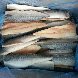 frozen mackerel fillet best selling product in europe
