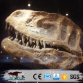 life size dinosaur head skeleton made by ziong city dinosaur manufacture