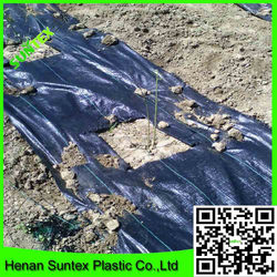 PP/PE material dark green anti weed mat for prevention grass growth