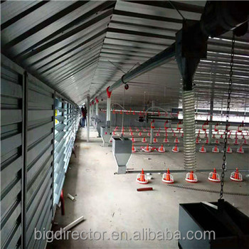 Export To Pakistan Modern Steel Structure Poultry House Project Business Plan In Botswana