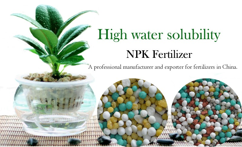 High Efficiency Granular NPK Fertilizer 16-16-8