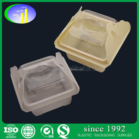 Disposable well designed PP PET PS Plastic mini cake container box