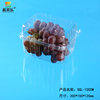 blister disposable clear fruit packaging container