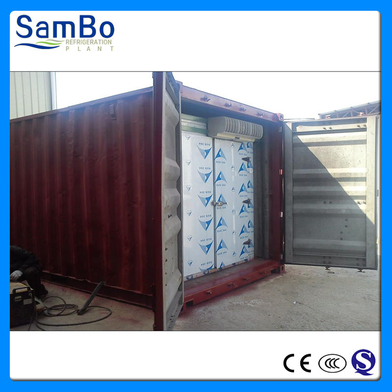 Manufacturer CE Certificates Containerized Walk in Cold Room with Bitzer Compressor
