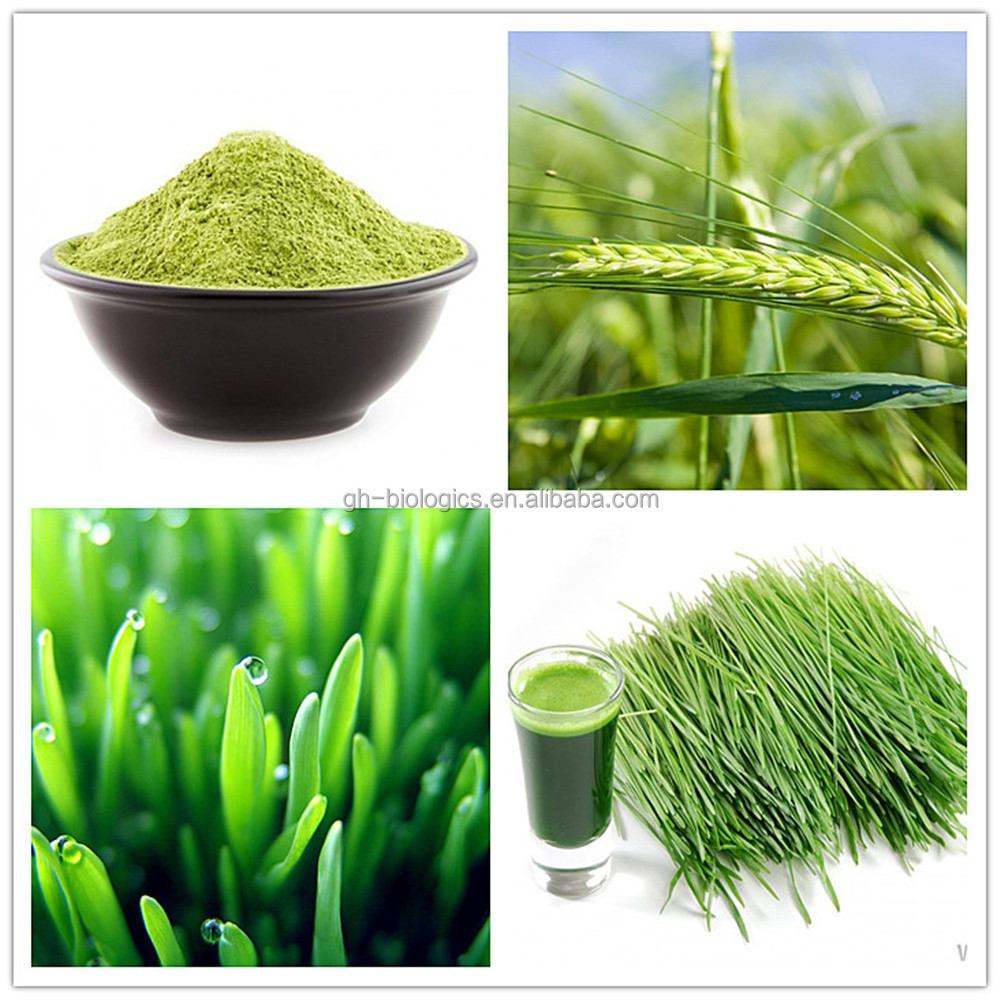 Barley Grass Powder Joint Health Antioxidant