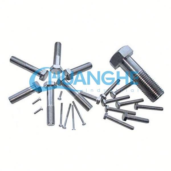 Stainless steel hex foundation bolt