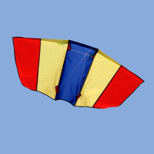 easy fly children kite