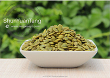 China Pumpkin Seeds Kernel - fresh dark green GWS A
