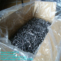 High Precision Wholesale Fashion Designer Common Steel Nails For Construction------CNSL111