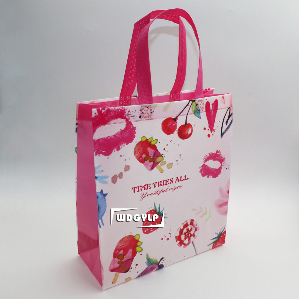 PP Non Woven Fabric Matte/Glossy Laminated Shopping Bag