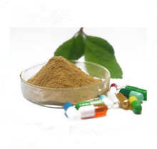 Ox Bile Extract Powder From Gallstone/ Ox Gallstones, Cattle Gallstones, Cow Gallstones For Sale