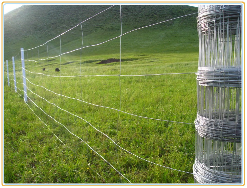 Hot dipped galvanized welded field fence net wire