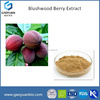 Whosales Pure Powder Natural Blushwood Berry