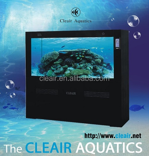 Luxury Arowana fish tank Cleair Glass Wall Aquarium MBSH900