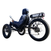 "26"" 500W 7 Speed Snow Beach Fat Tire Electric Recumbent Bike with Pedal Assist and Throttle"