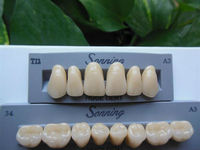 CE certification porcelain hardness denture teeth