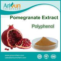 Pomegranate Extract Powder Pomegranate Polyphenol 80%