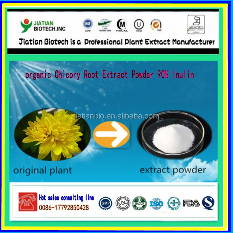 organic Chicory Root Extract Powder 90% Inulin