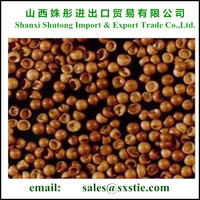 China High Grade Hatching Rate Artemia
