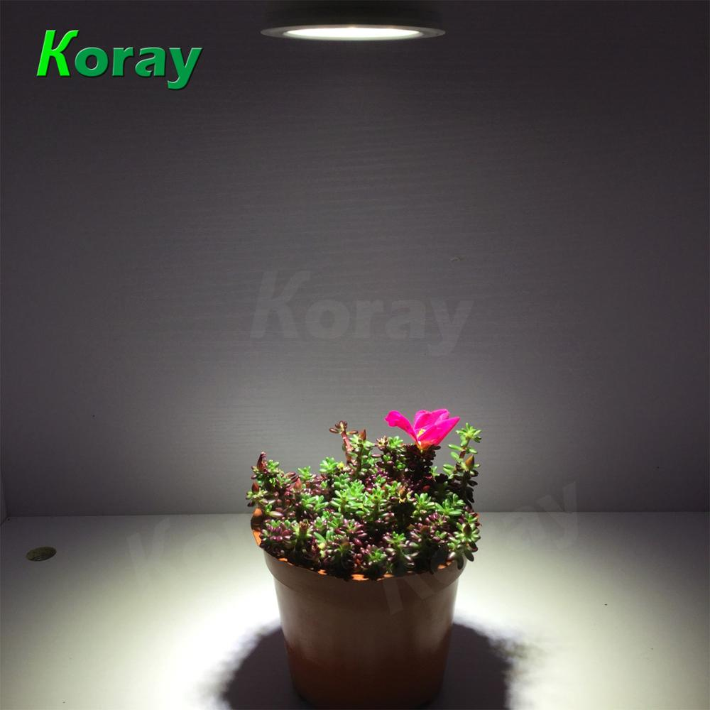 PAR30 series bulb led grow light for flowering and fruiting with full spectrum plant lamp