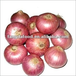 apple red delicious from china