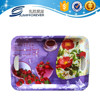 Taizhou poromotion gift manufacture china plastic lunch food charger melamine serving tray