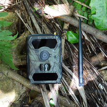 Wholesale Outdoor Hunting Camera 12MP 1080P 3G Wireless waterproof Wildlife Camera Night Vision
