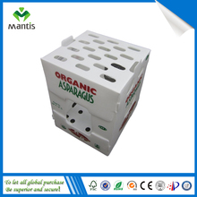 Transparent corflute fruit and vegetable box