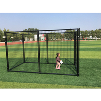 PVC Coated Welding Wire Mesh Modular large dog backyard kennels