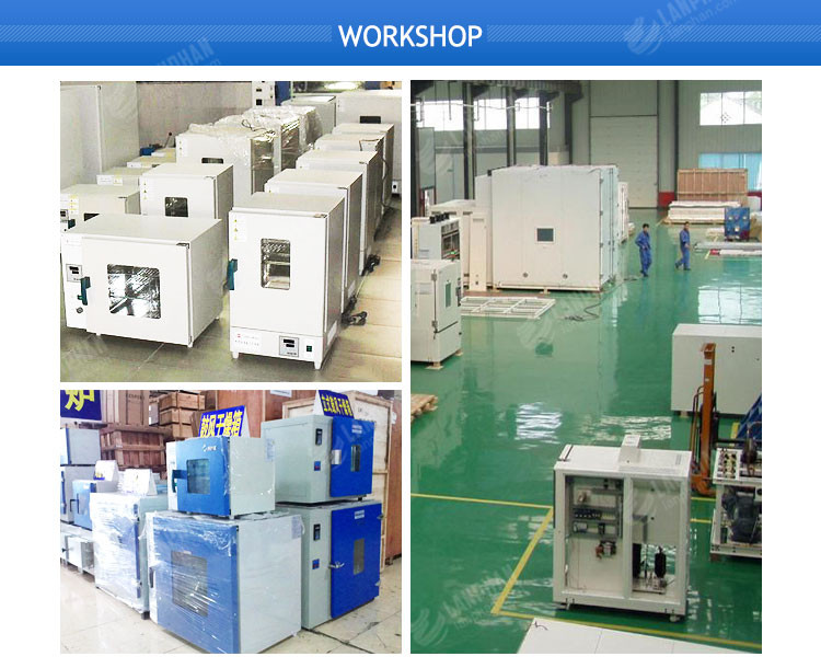 200l Vacuum Drying Oven with Timer for Sample Drying