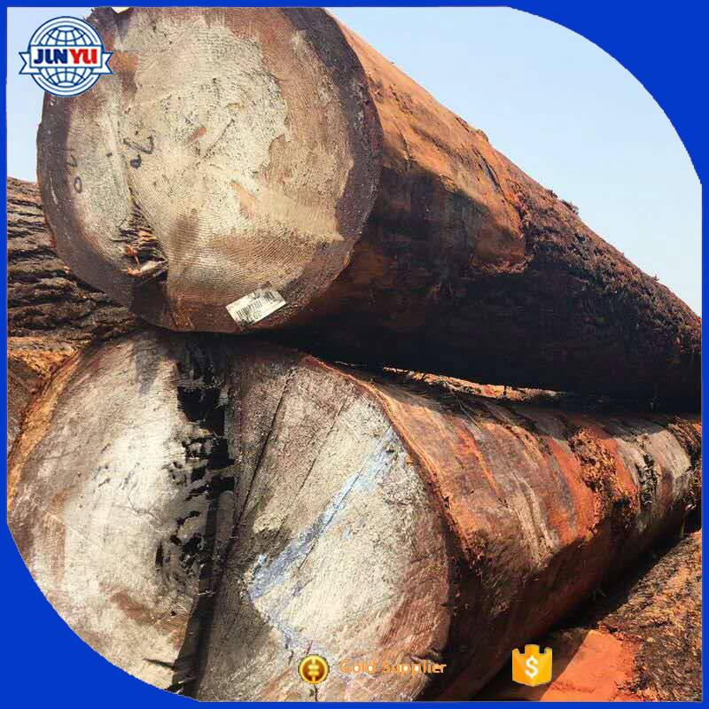 export red pine logs diameter 20-40cm red pine logs Russia red pine logs