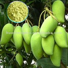 Hot Product Wild Mango Seed Extract