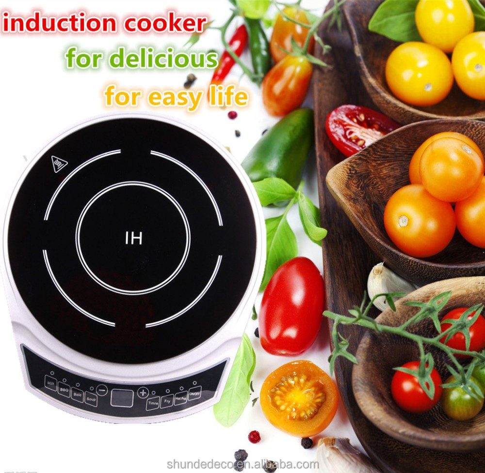 12v battery powered kitchen appliance induction cooker with spare parts