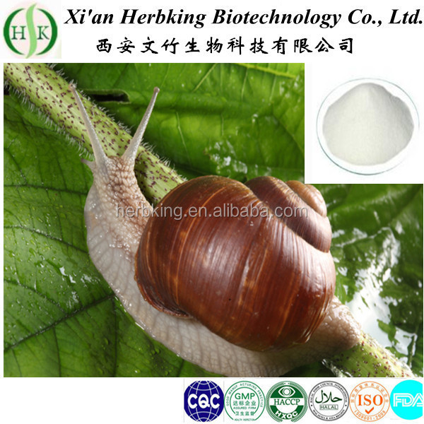 Factory supply Snail Extract powder with best price
