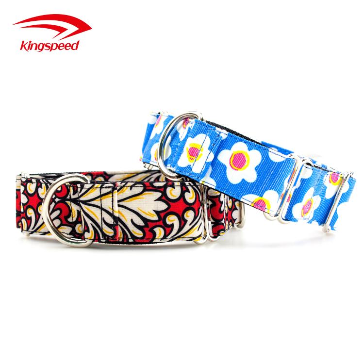 martingale dog collar custom